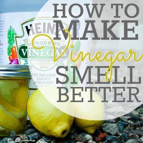 How To Make Vinegar Smell Better Daily Mom