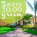 5 Ways To go green home edition