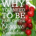 Why You Need To Be Part Of The Organic Revolution