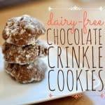 Dairy Free Chocolate Crinkle Cookies