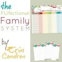 the functional family system