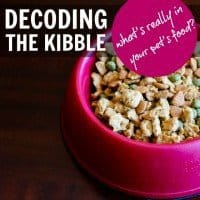 decoding the kibble