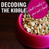 decoding the kibble