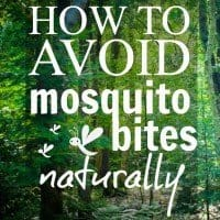 how to avoid mosquito bites naturally