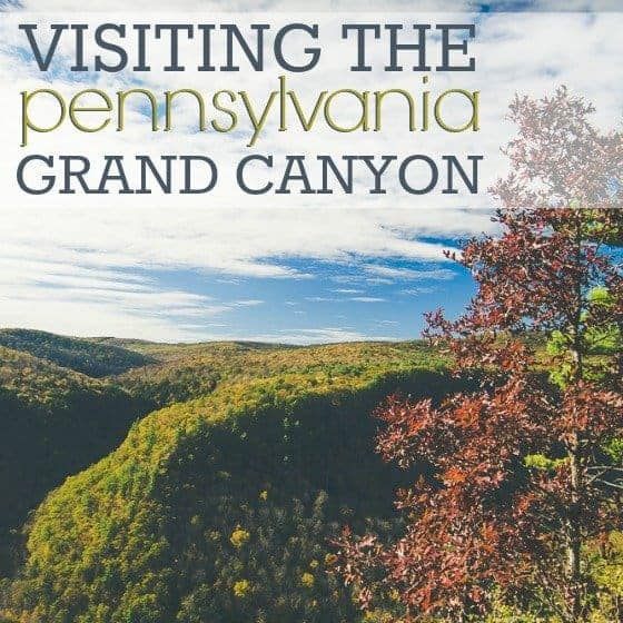 Visiting_the_Pennsylvania_Grand_Canyon