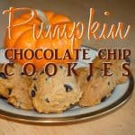 pumpkin choc chip 2ndtry copy
