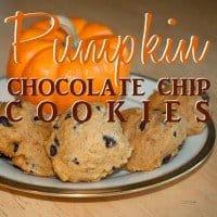pumpkin choc chip 2ndtry copy
