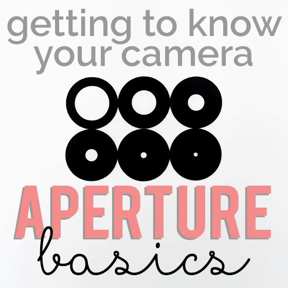 http://dailymom.com/capture-2/getting-to-know-your-camera-aperture-basics