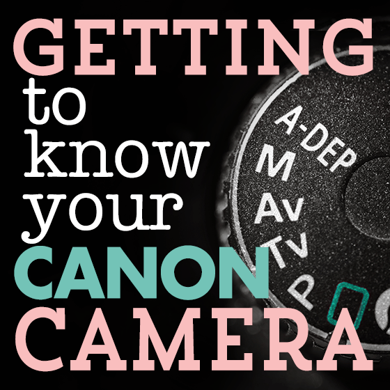 Learning about buttons on your  camera