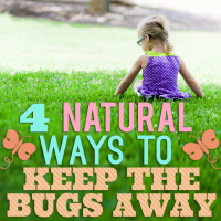 4 Natural Ways to Keep the Bugs Away