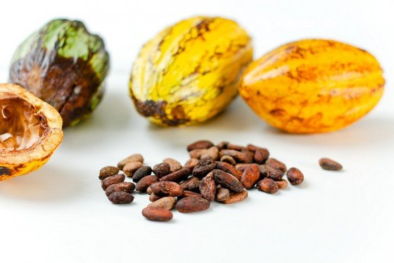 Cacao seeds and fruit