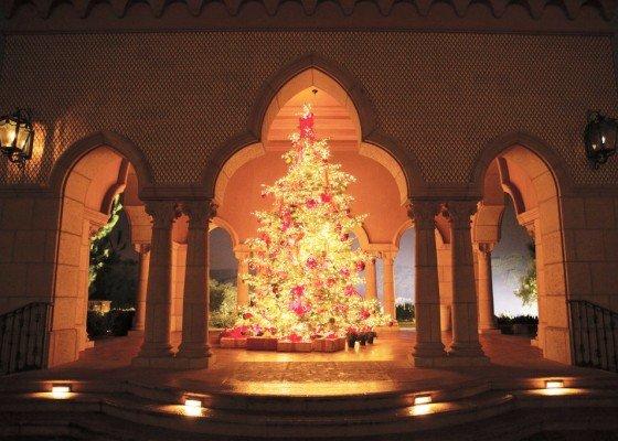 TGDM_Outdoor Holiday Tree
