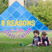 8 Reasons to Take a  State cation