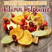 Easy Homemade Autumn Potpourri