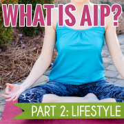 What is AIP Part 2 v2