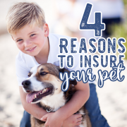 4 Reasons to Insure Your Pet