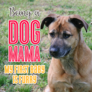 Being a Dog Mama - My First Baby is Furry
