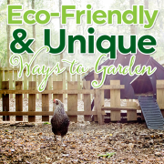Eco-Friendly and Unique Ways to Garden