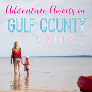Adventure Awaits You in Gulf County Florida