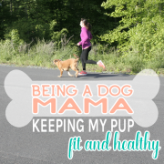 Being a Dog Mama Keeping My Pup Fit and Healthy