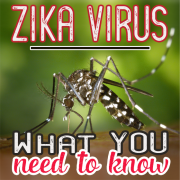 Zika Virus What You Need to KNow