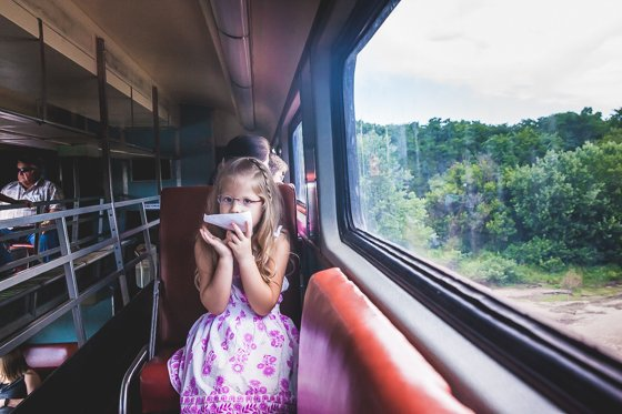 train (7)