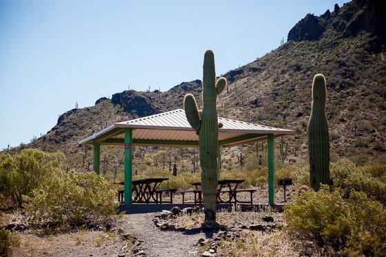 Picacho Peak State Park (9)