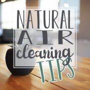 Natural-Air-Cleaning-Tips