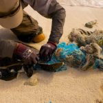 Plastic Oceans- The Epidemic That is Ruining Our Oceans