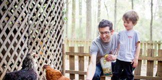 Eco-Friendly and Unique Ways to Garden