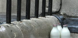 4 Reasons You SHould have Your Milk Delivered