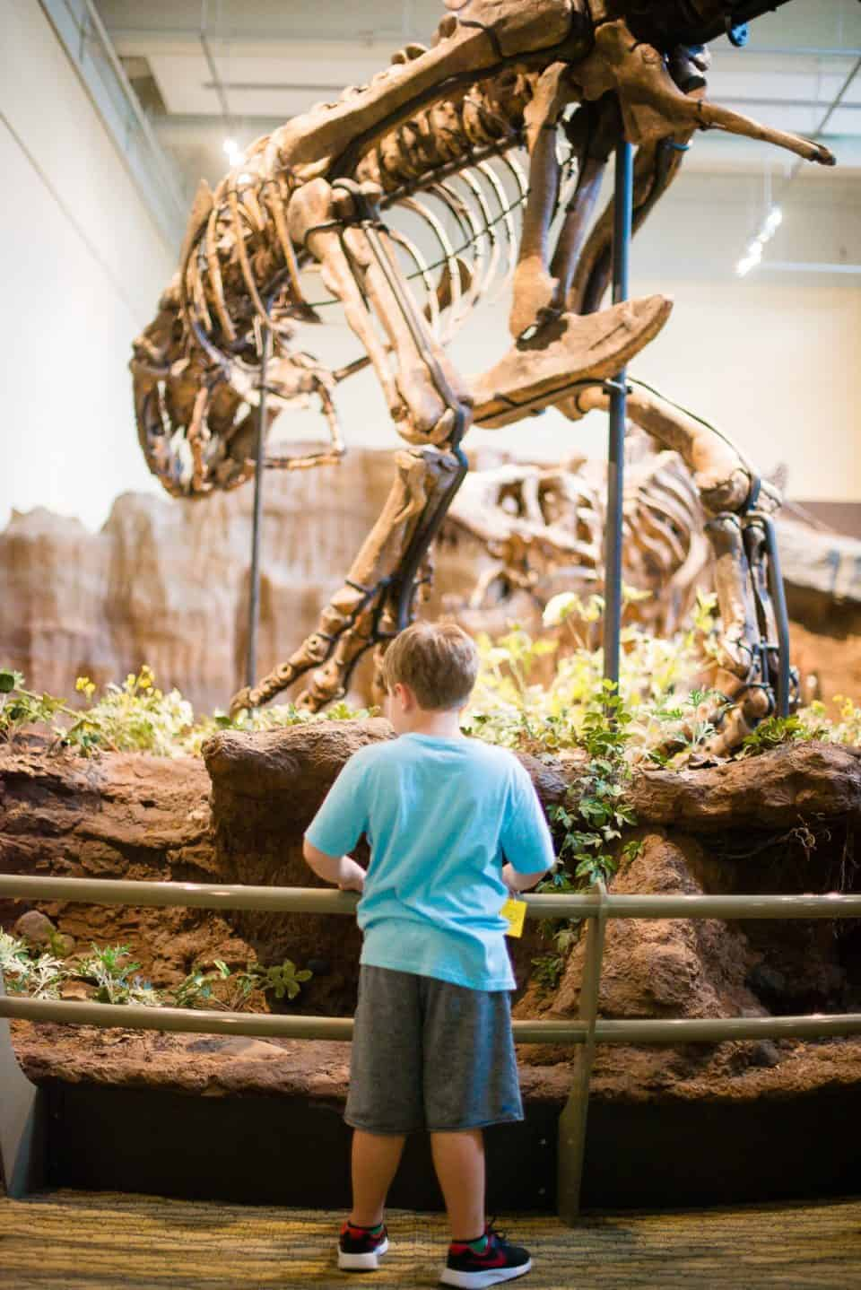 things-to-do-in-pittsburgh-with-kids (32)