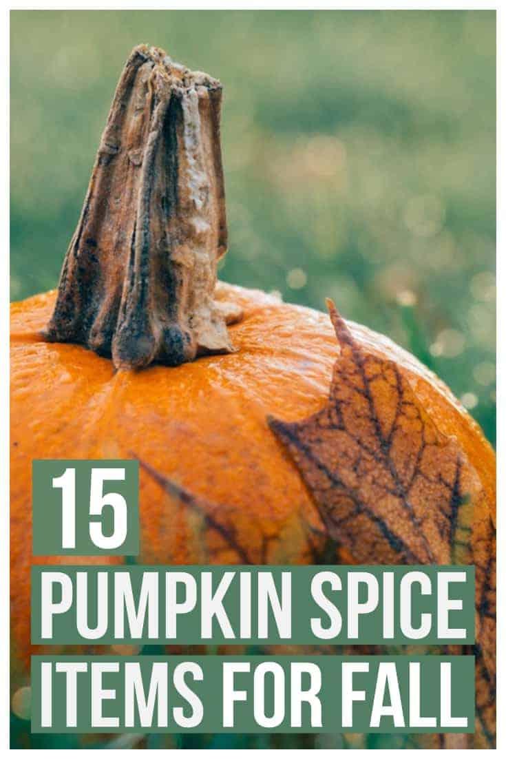 12 Pumpkin Spice Recipes -2