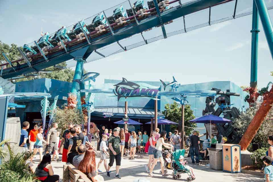 seaworld-orlando-theme-park (11 of 58)
