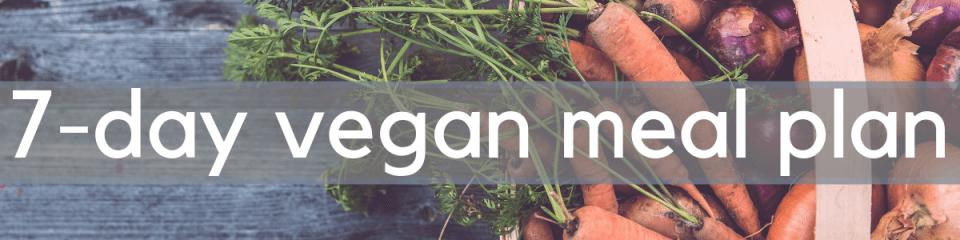vegan-meal-plan-ideas
