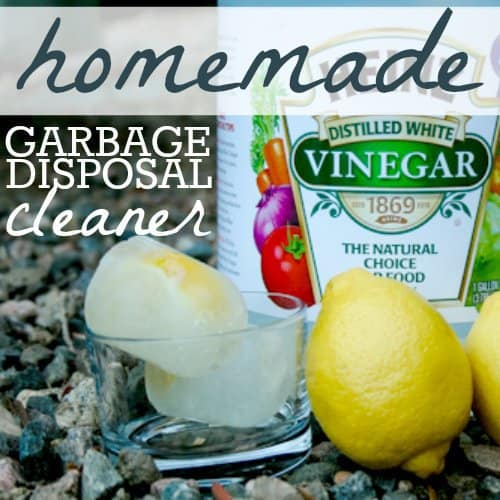 Homemade Garbage Disposal Cleaner 1 Daily Mom Parents Portal