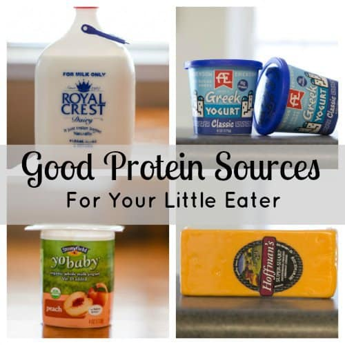 Good Protein Sources For Your Little Eater 1 Daily Mom Parents Portal