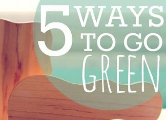 5 Ways To Go Green Baby Edition