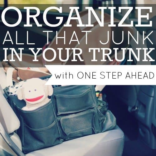 Day 15: One Step Ahead Car Organizer 2 Daily Mom Parents Portal