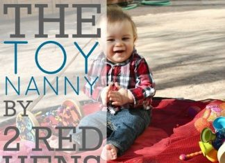 The Toy Nanny By 2 Red Hens Studio