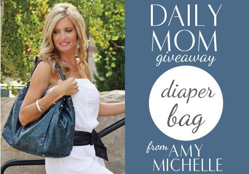 Day 9: Amy Michelle Diaper Bag 1 Daily Mom Parents Portal