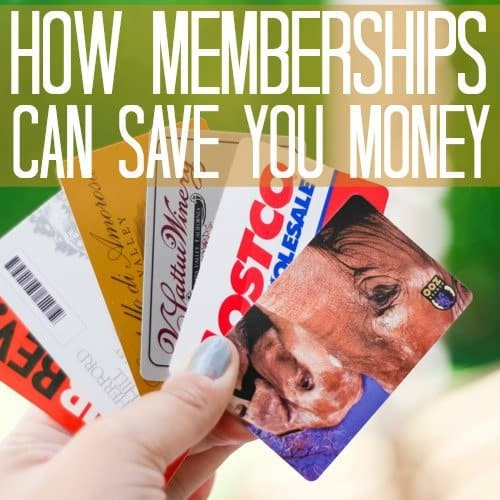 How Memberships Can Save You Money 1 Daily Mom Parents Portal