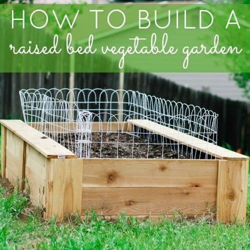 How To: Build A Raised Bed Vegetable Garden 1 Daily Mom Parents Portal