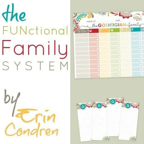 Functional Family System By Erin Condren