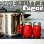 Save A Little Summer With Fagor