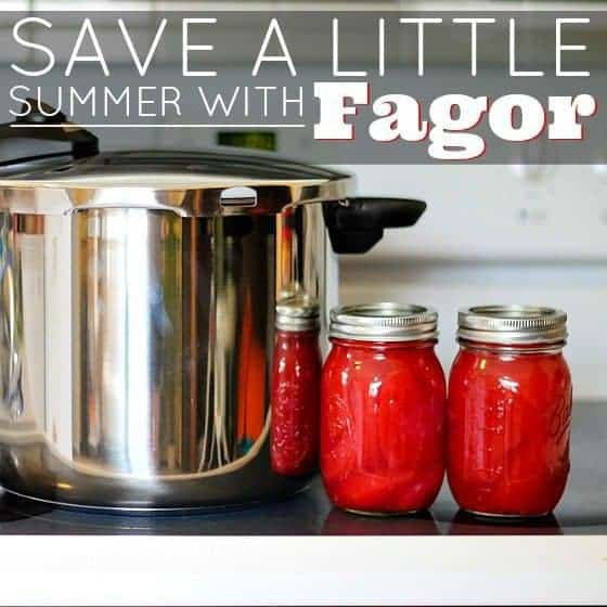 Save A Little Summer With Fagor 1 Daily Mom Parents Portal