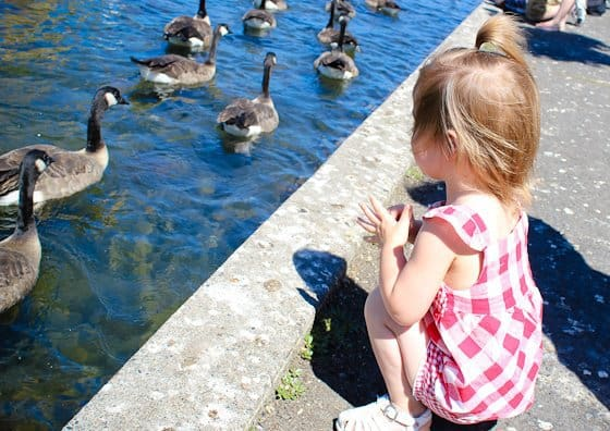 50 Summer Bucket List Ideas 7 Daily Mom Parents Portal