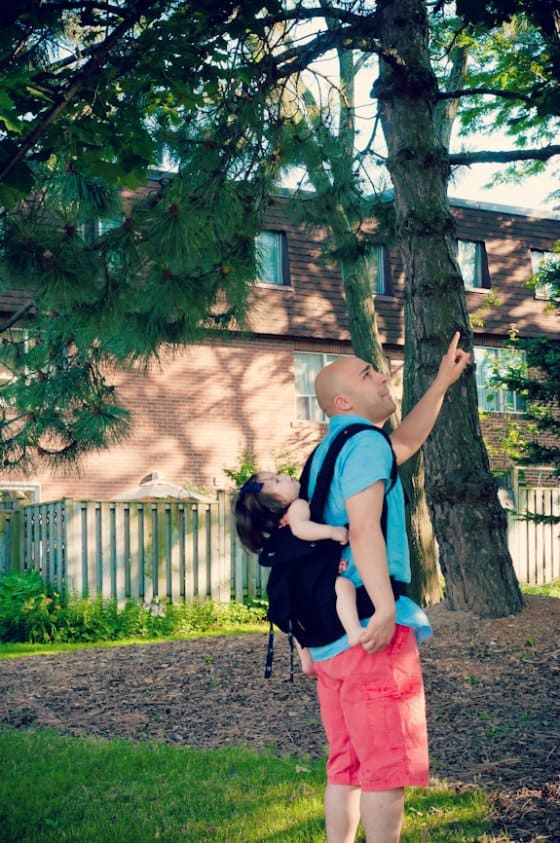 Carrier Guide: Lillebaby Complete Carrier 4 Daily Mom Parents Portal