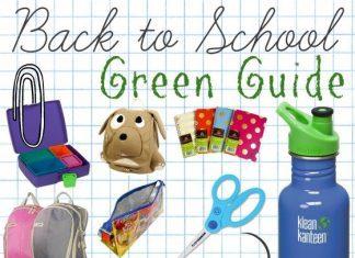 Bts Green Guide