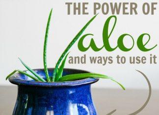 The Power Of Aloe